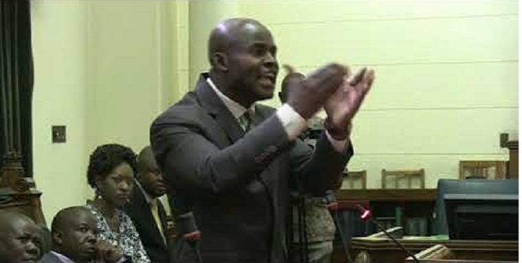 Mliswa apologises but complains: Parliament is being bullied willy-nilly